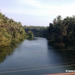 Locall Anjarakandy river