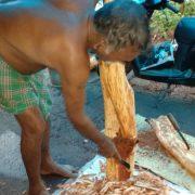 Laxmnan peeling cinnamon