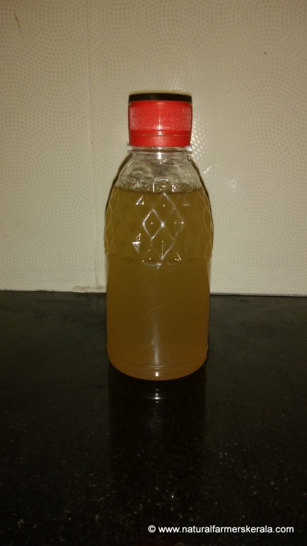 Organic Honey Vinegar