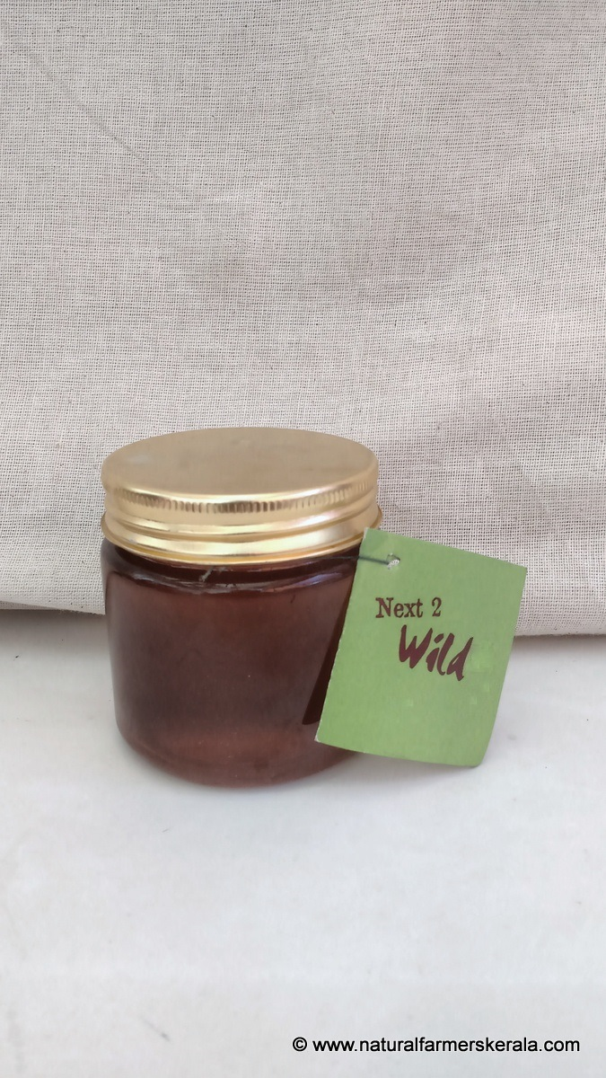 sample bottle of honey sourced from wild trees