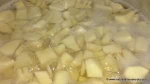boil bamboo shoot pieces