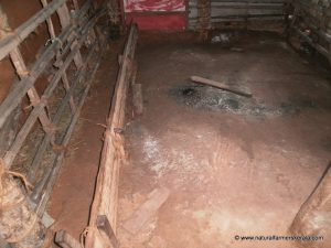 cow shed mud floor