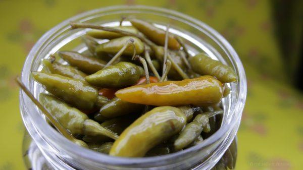 kanthari chilli in brine