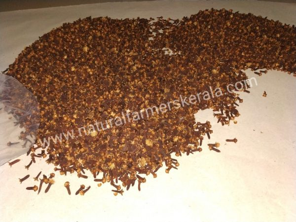 Whole dried kerala cloves